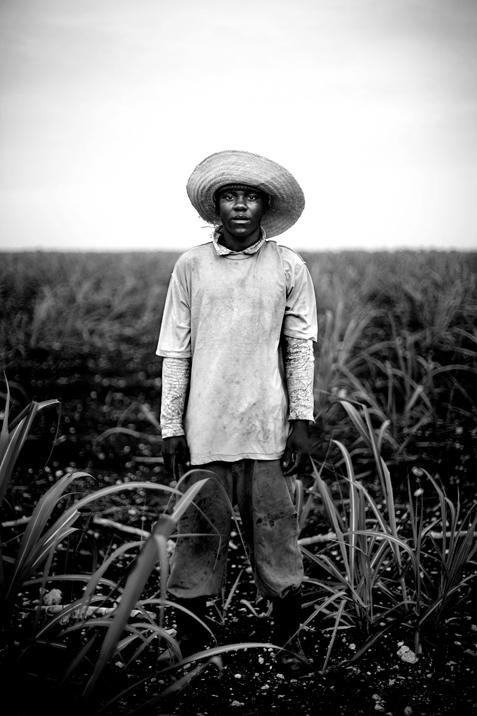 """""""Sugarcane Worker"""""""
