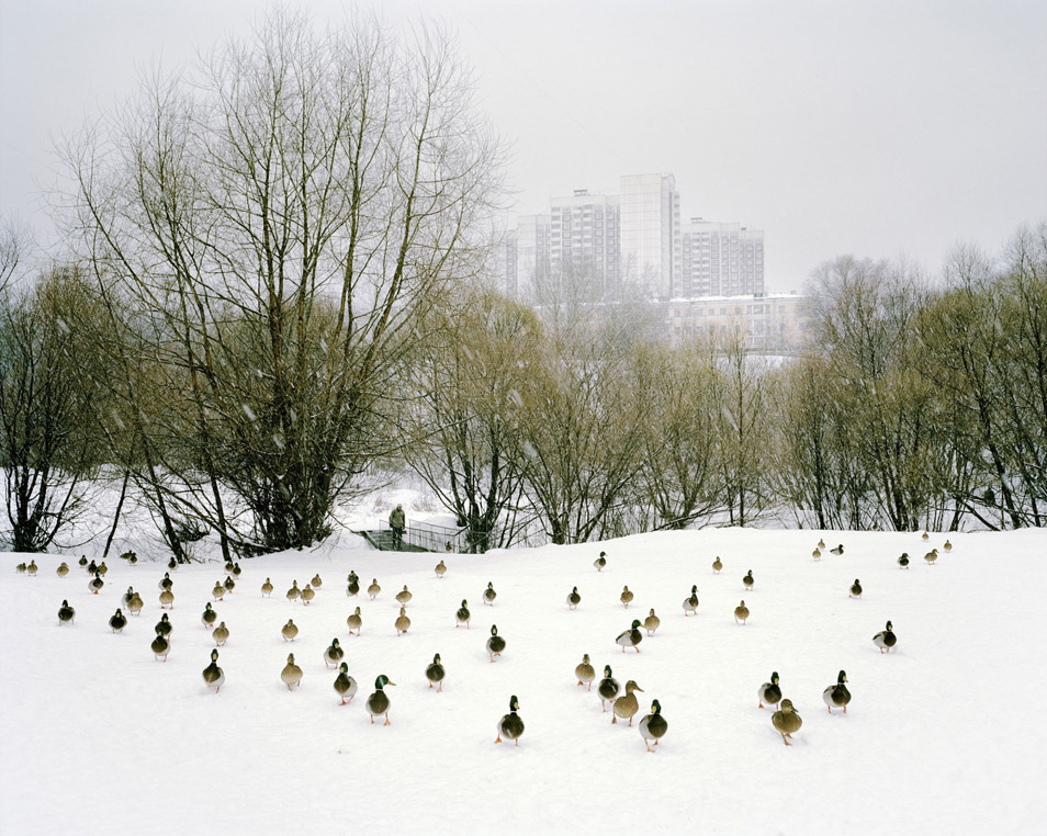 "Moscow, 2009, from Alexander Gronsky's ""Pastoral"""