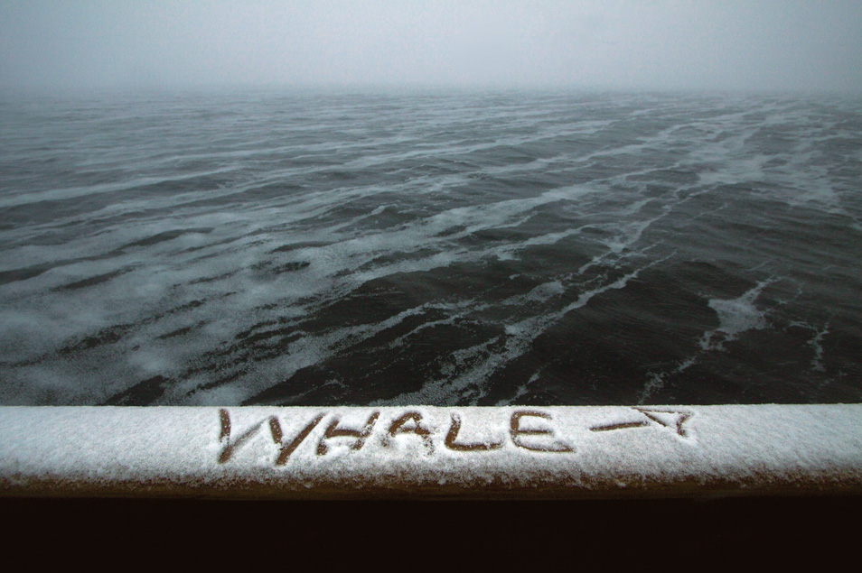 A message left on the the bridge rail of the MV Steve Irwin by crew after a whale sighting off Antarctica's coast.