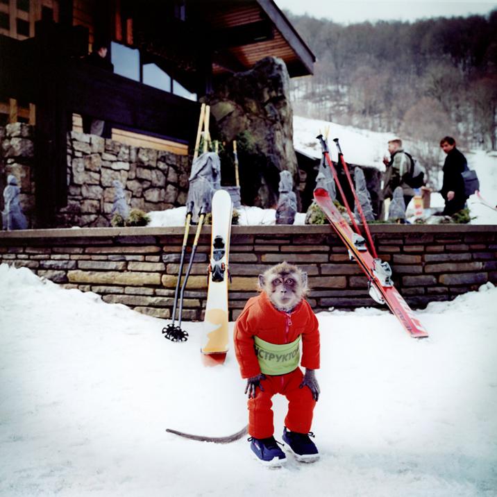 Olympic Ski Monkey