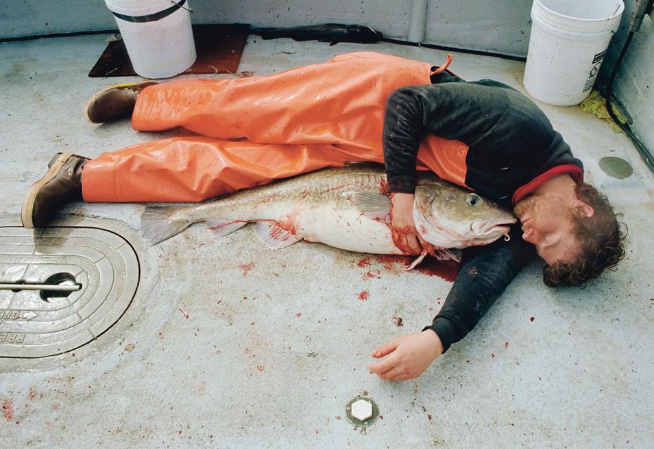 Corey-Arnold-Fisherman